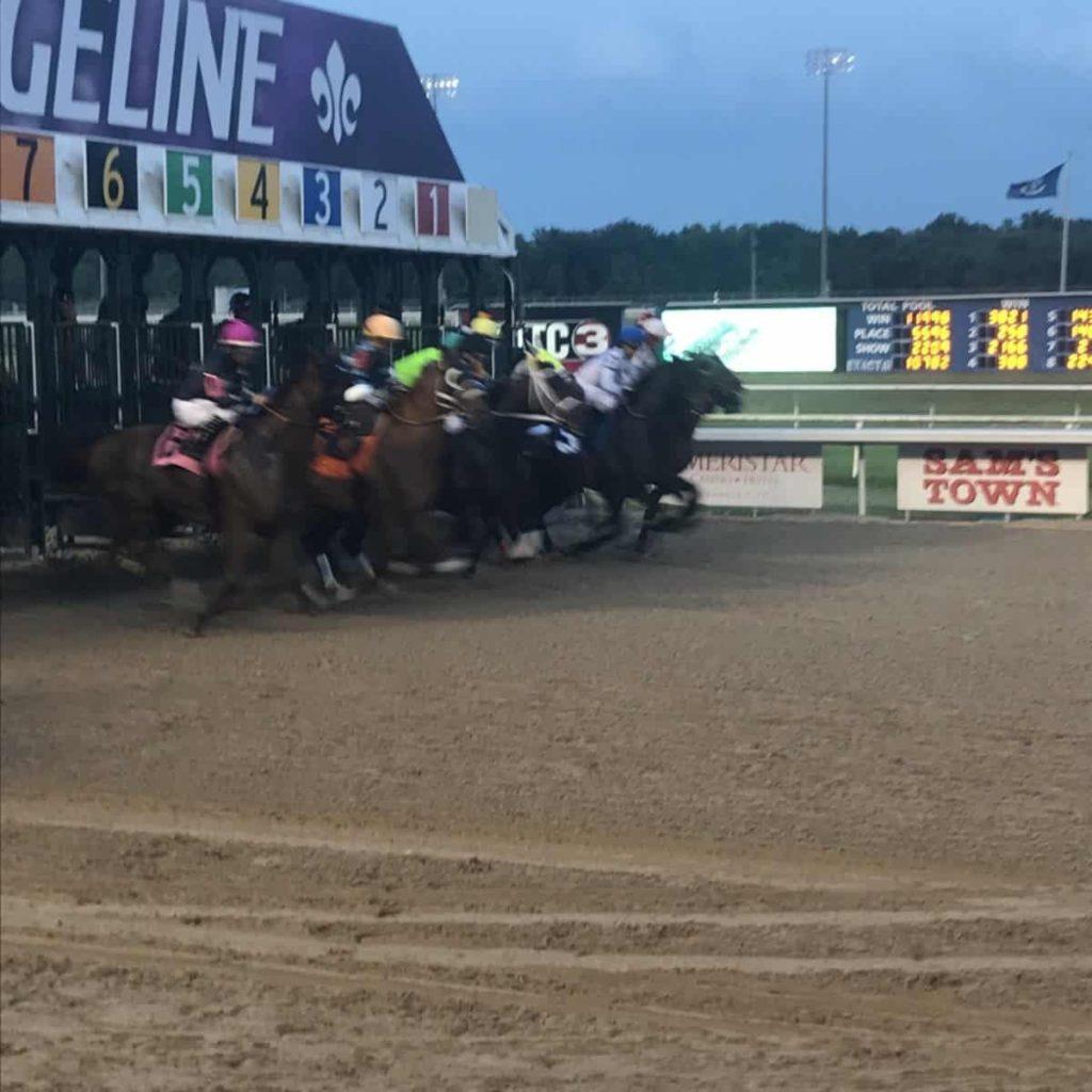 horses, color blind,