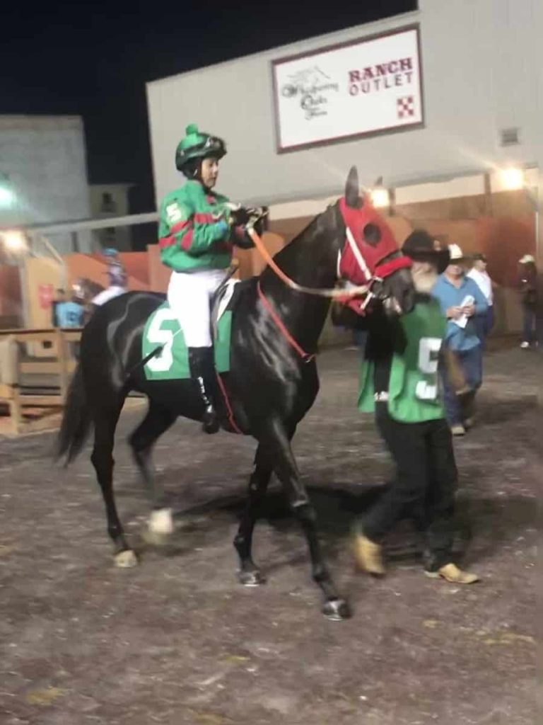 horse racing,race horse, miles henry