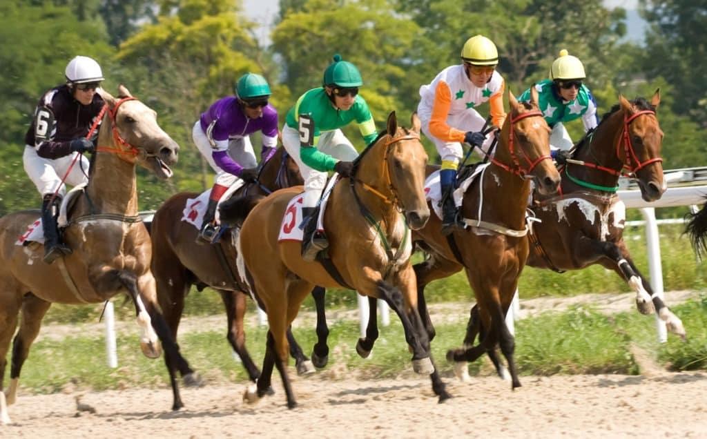 Why Jockeys Wear Silks And 12 Other Horse Jockey Facts