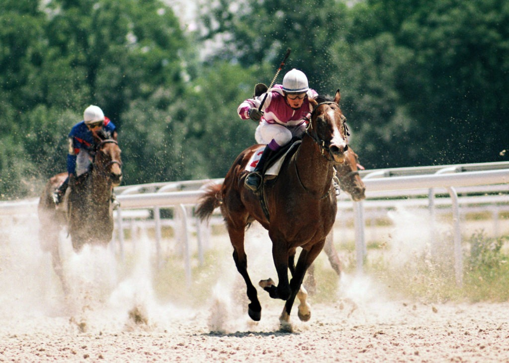 Picture of a jockey whipping a racehorse during a race.