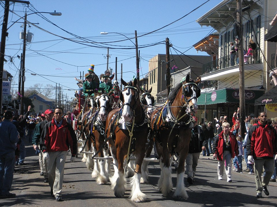 Picture of Clydesdales pulling a wagon during a parade.