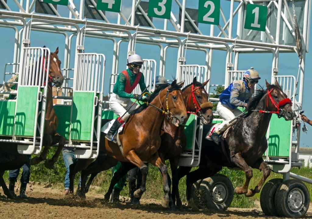 picture of horses breaking out of the starting gates,