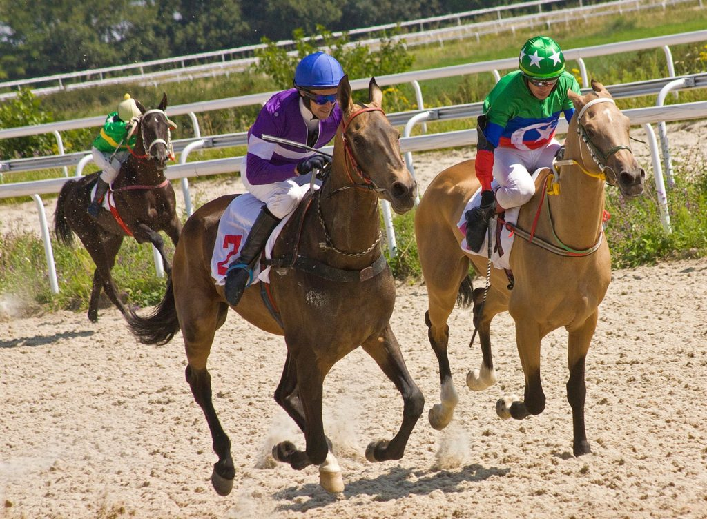 Picture of jockeys racing down the horse track.