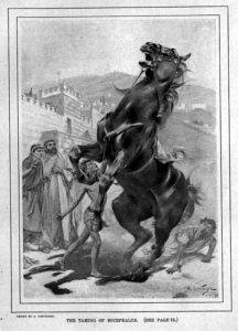 Picture of Bucephalus, Alexander the Greats warhorse,