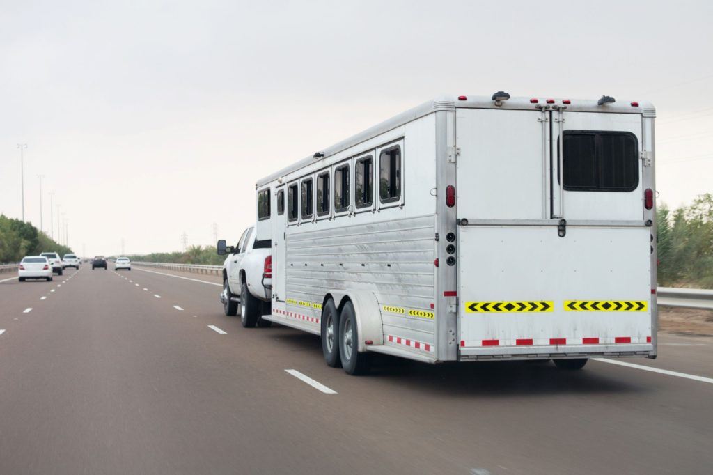 horse, horse trailer, essentials, must-haves, trailers,