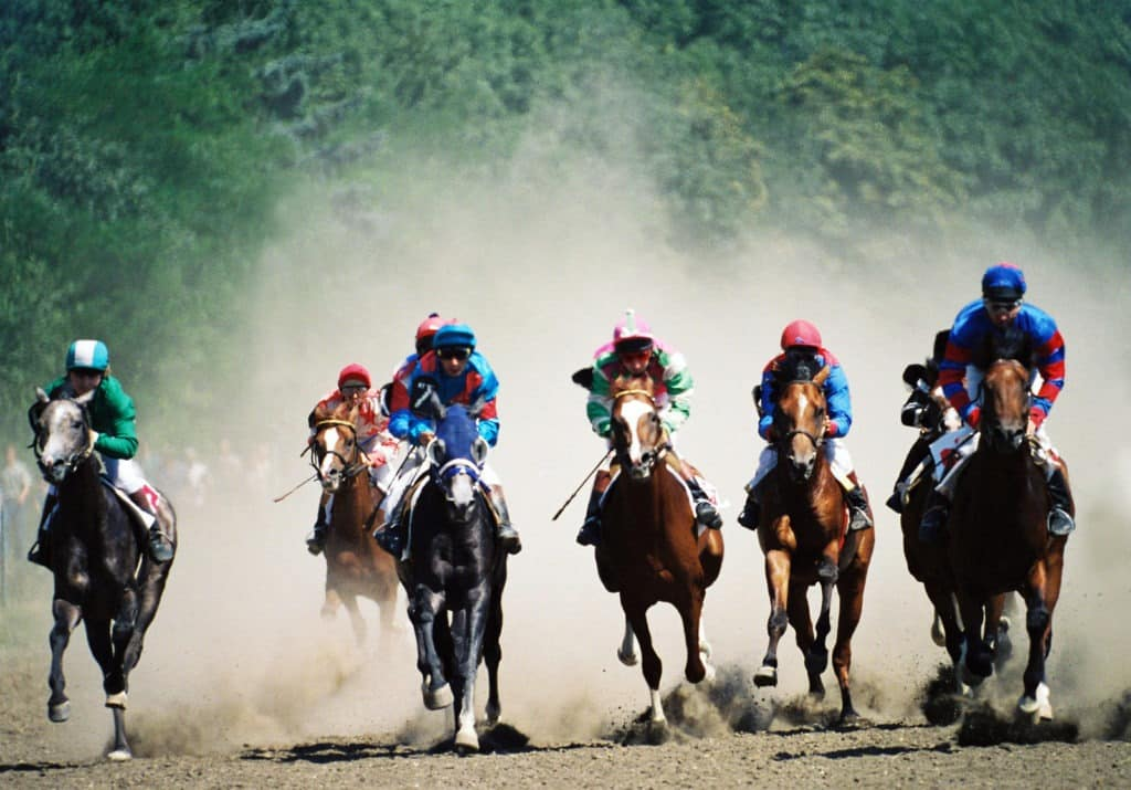 Picture of horses racing towards the finish line,
