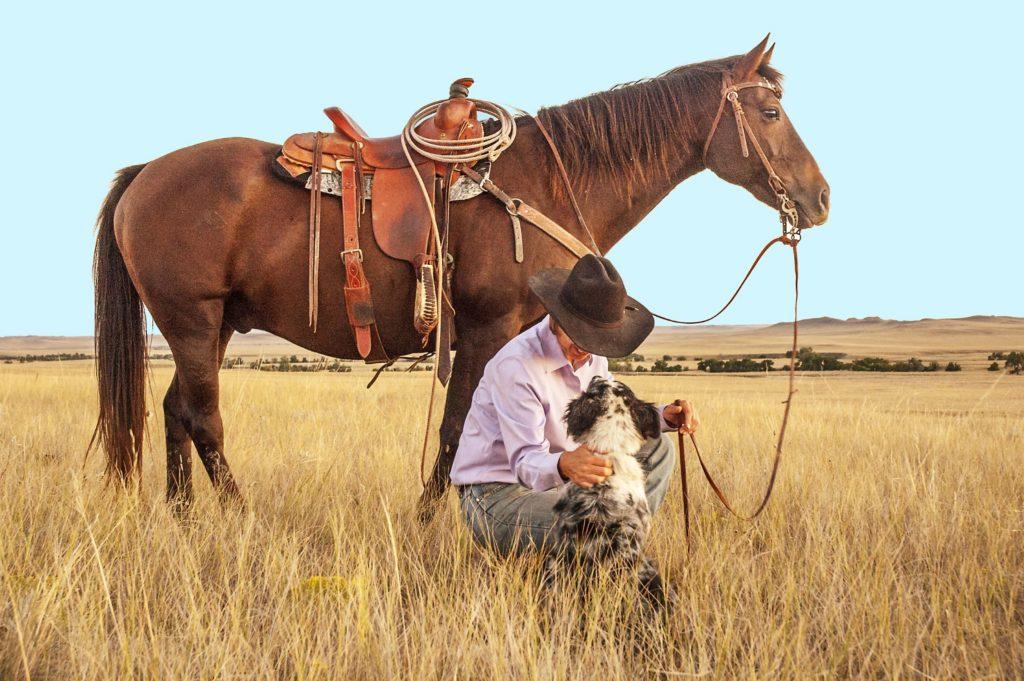 cowboy boots, horseback riding,