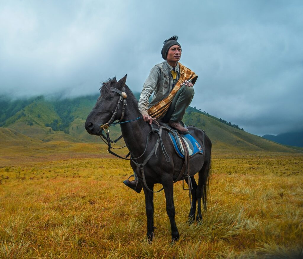 picture of a mongol man perched on the back of his horse in an open range,
