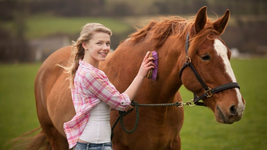Picture of a girl smiling at the camera while she brushes her horse.