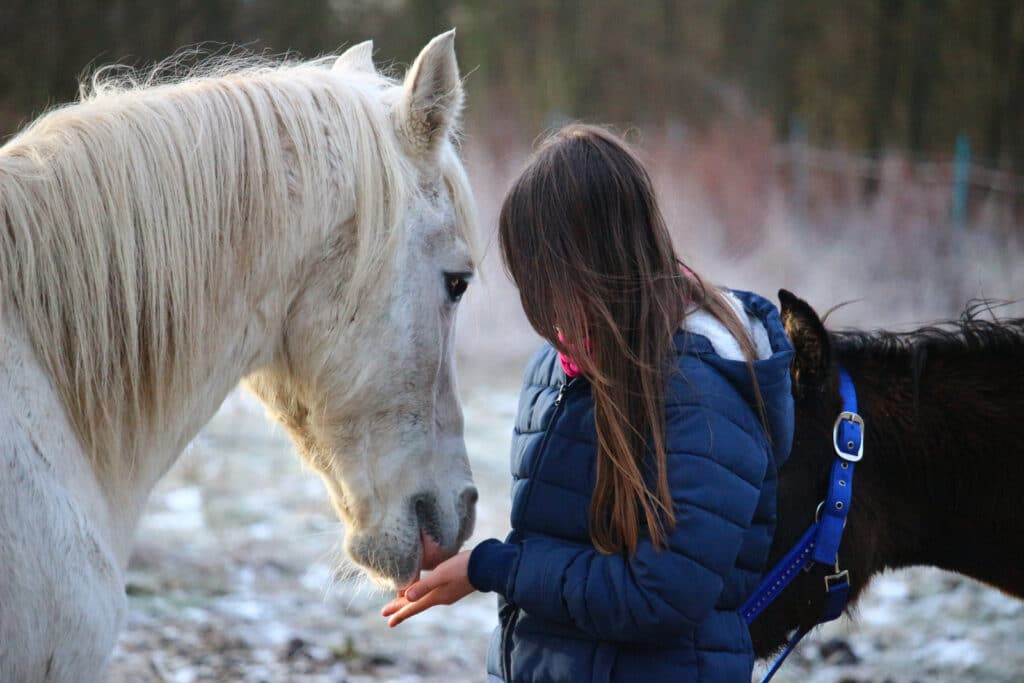 picture of a girl feeding a horse from her hand,