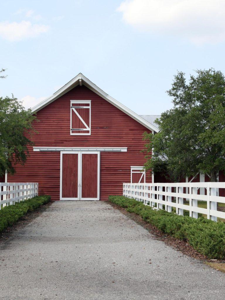 barn,horse,shelter,