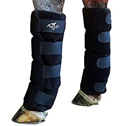 Best Ice Boots for Horses Legs