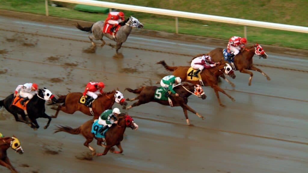 far,horse,run,