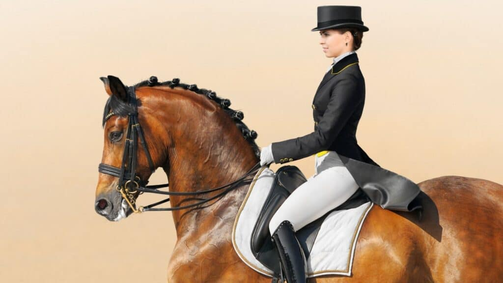 Picture of a dressage rider and you can see the saddle pad easily.