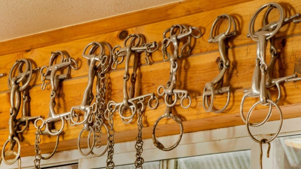 Picture of a row of bits hanging on hooks in a tack room,