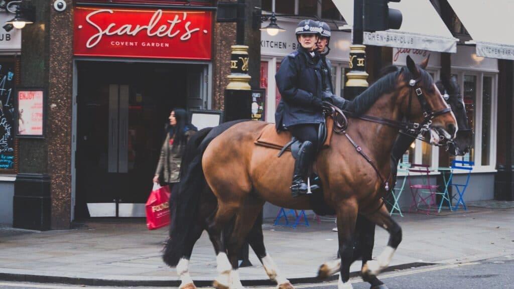 city,horse,police,