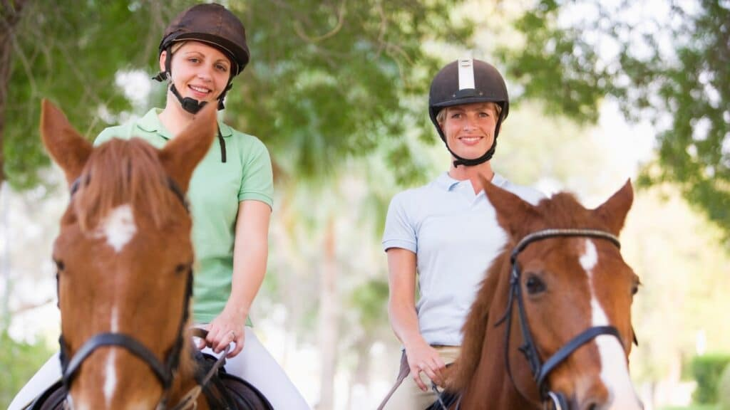 city,horse,riding,buddy,