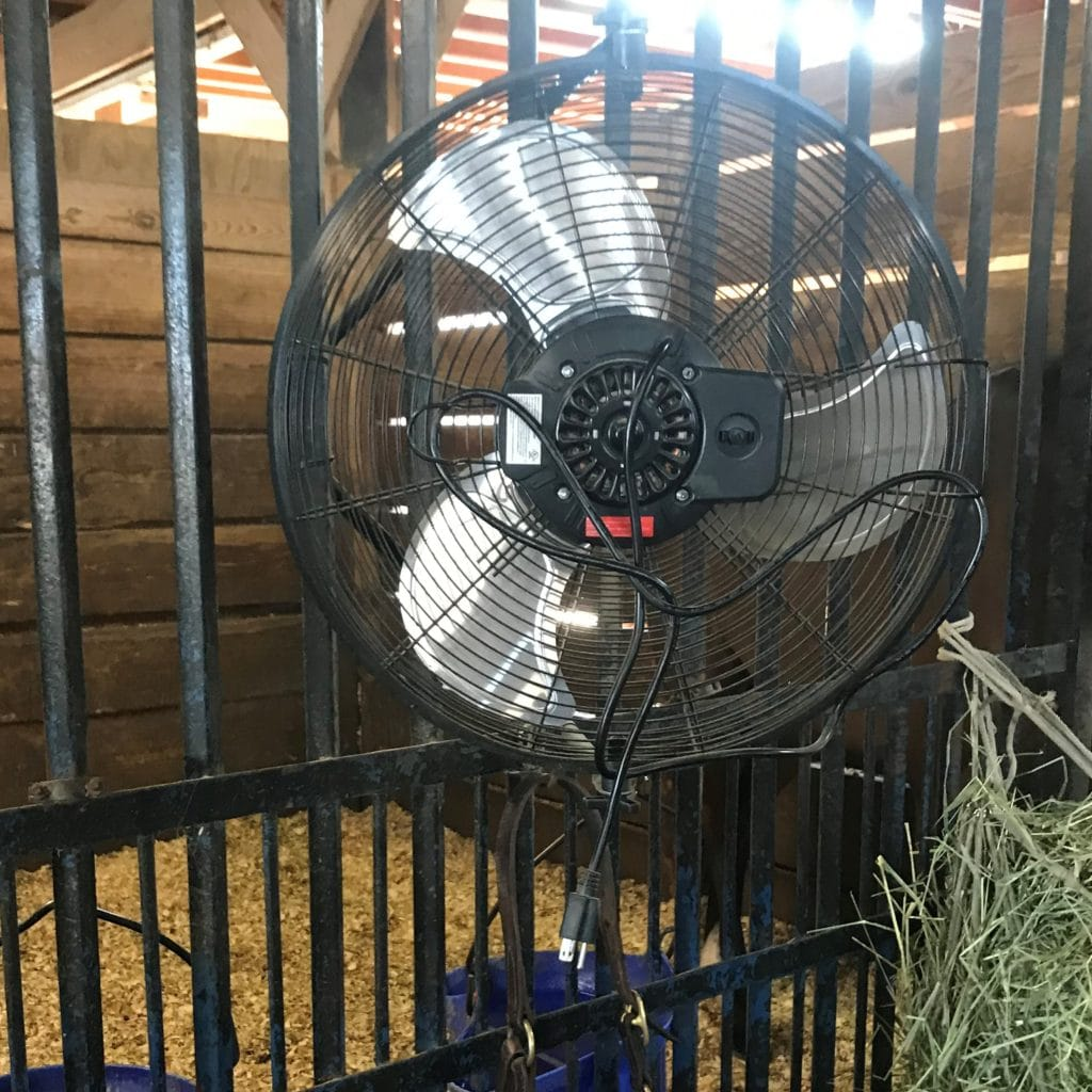 picture of a fan in a horse stall,