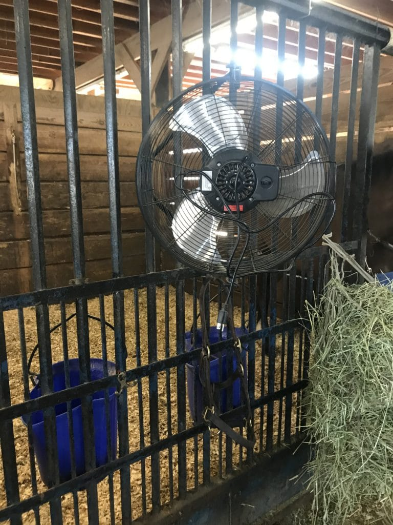 Picture of a horse stall with a fan,