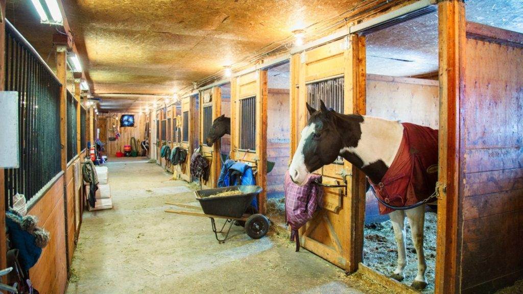 picture of the aisle that shows the barn flooring,
