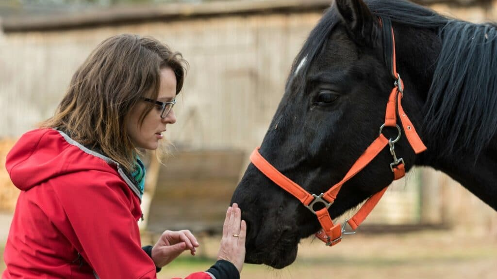 Picture of a woman checking her horse for a common disease,