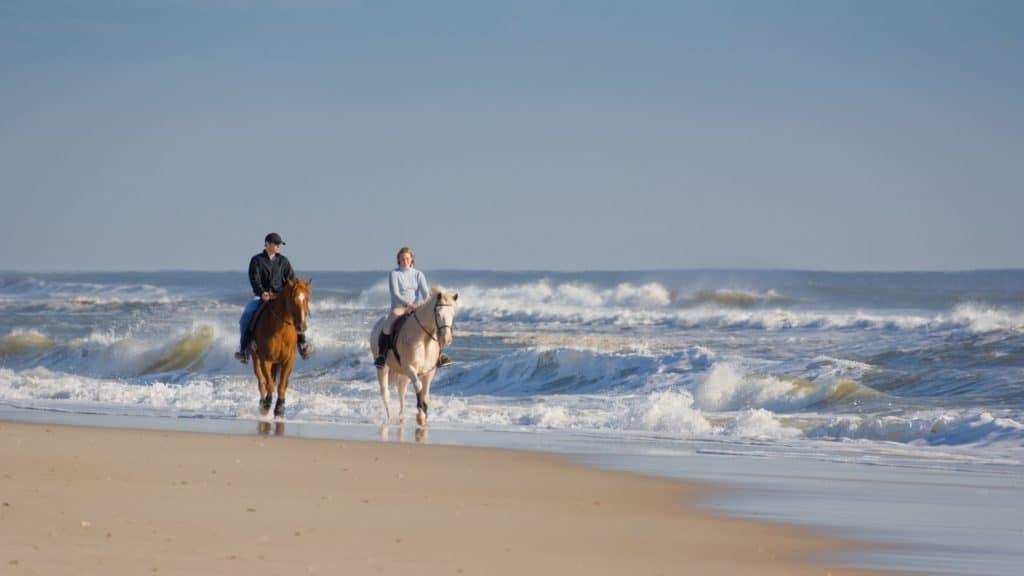 picture of a couple riding on the beach, beaches, horses,