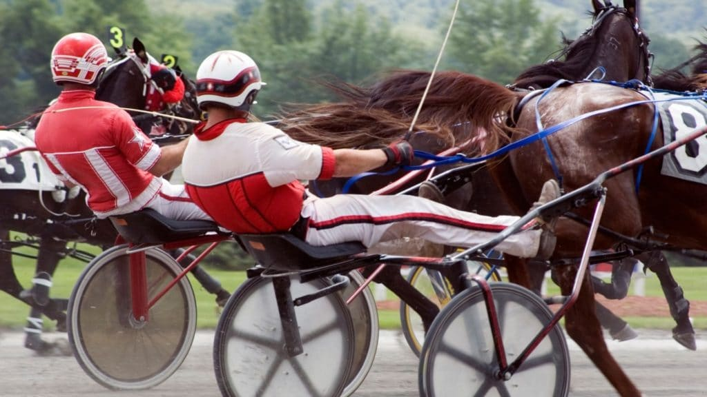 cart,harness racing,