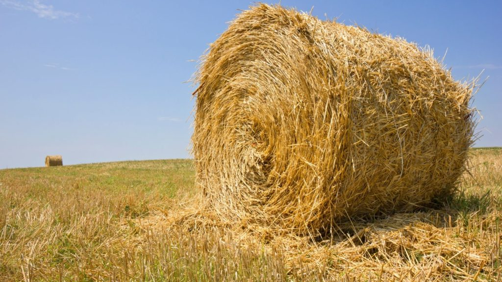 picture of a round bale of hay,