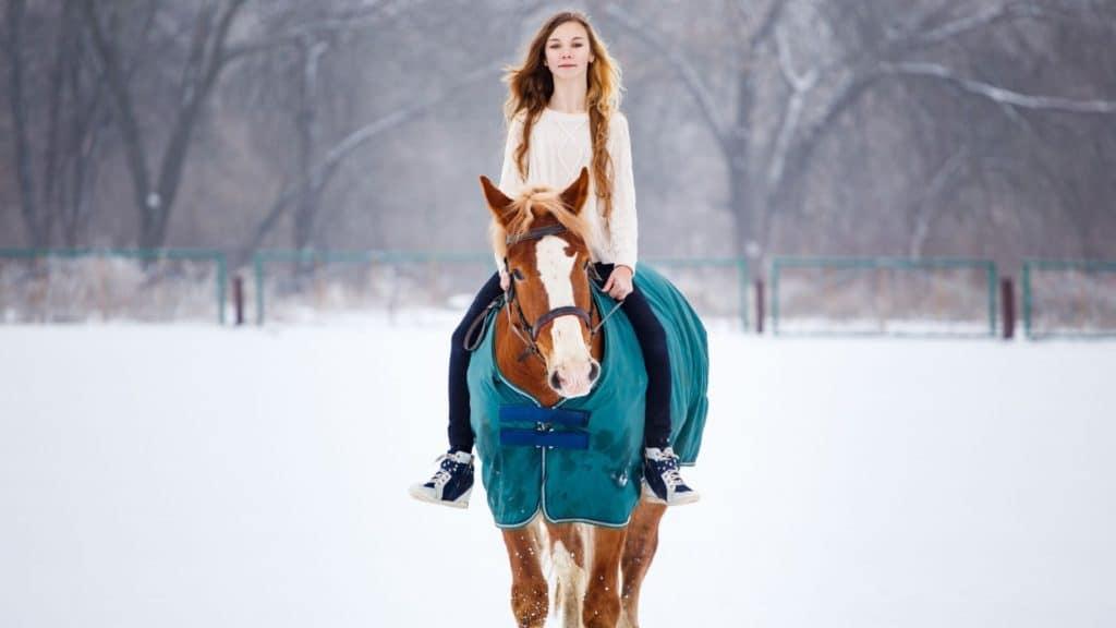 winter,horseback riding,
