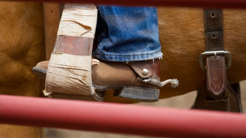 Picture of a boot in a saddle stirrup,
