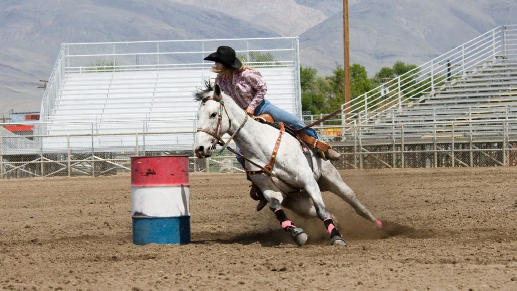 rent a horse trailer, barrel racing horse, horse communities,