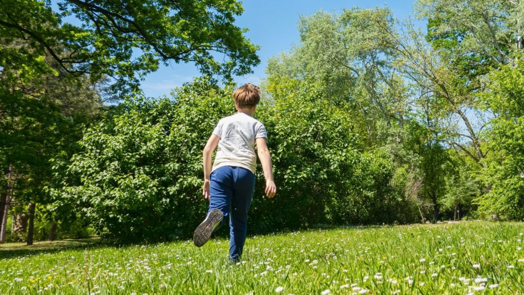 picture of a boy running from horseflies,