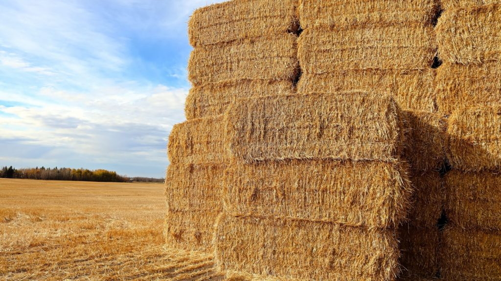 picture of a stack of hay bales, bales of hay,