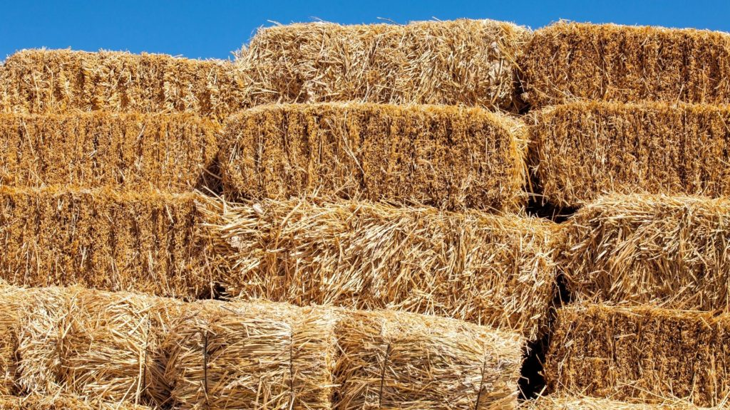 picture of square bales of hay, bale of hay,
