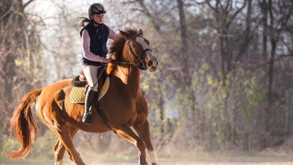 pregnant, woman riding horse pregnant,