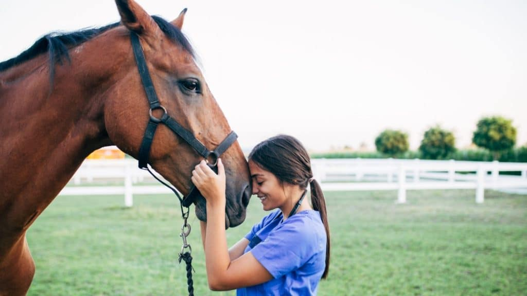 ride, girl and horse, building trust,
