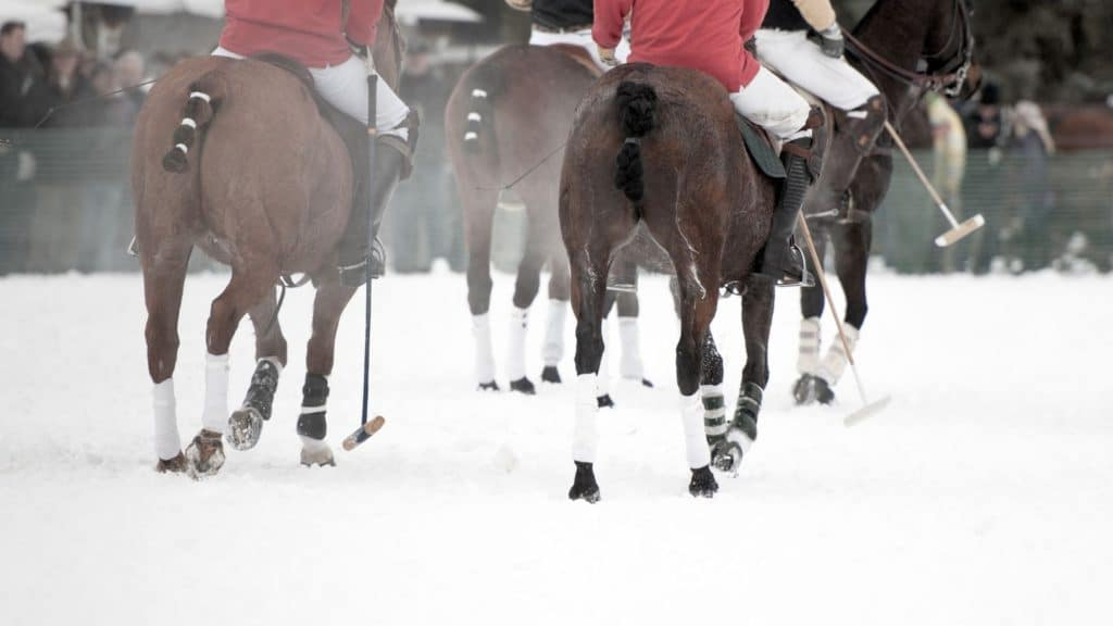 team playing polo in the cold, horse polo,