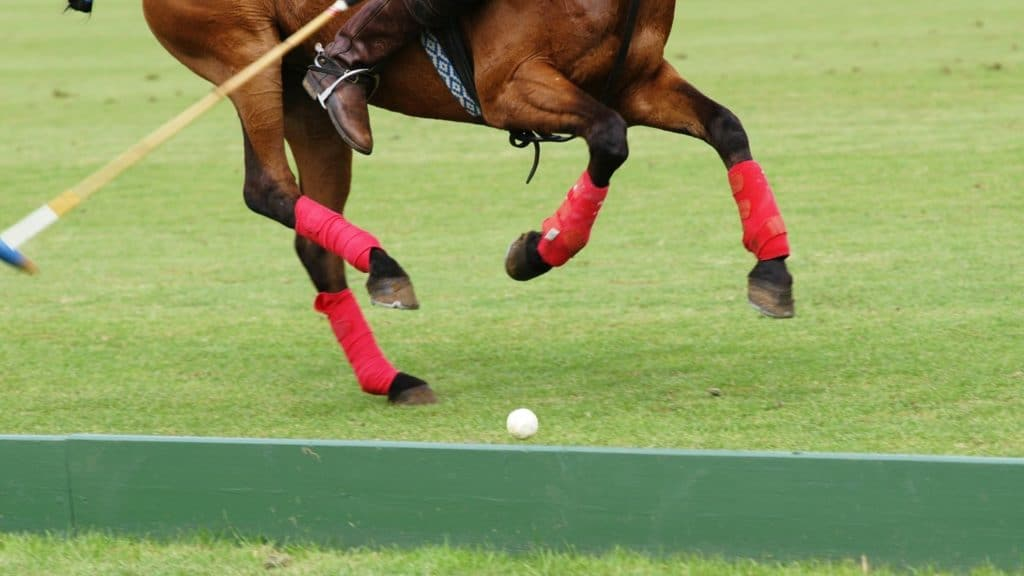 picture of a polo player swinging a mallet at a polo ball.