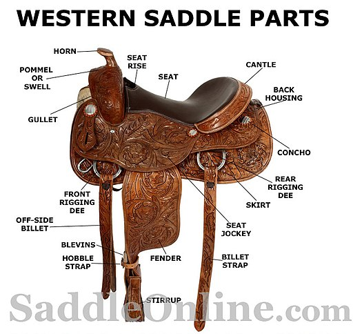 Diagram of a Western saddle with the names of the parts,