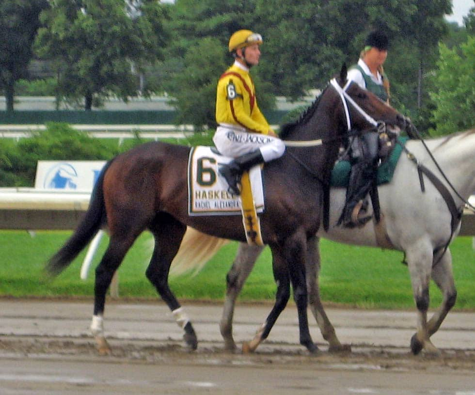 Picture of Rachel Alexandra before a race,