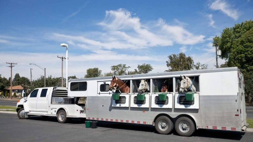 Picture of a truck pulling a horse trailer loaded with horses.