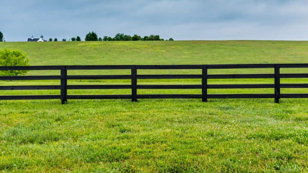 Picture of a wood board fencing,