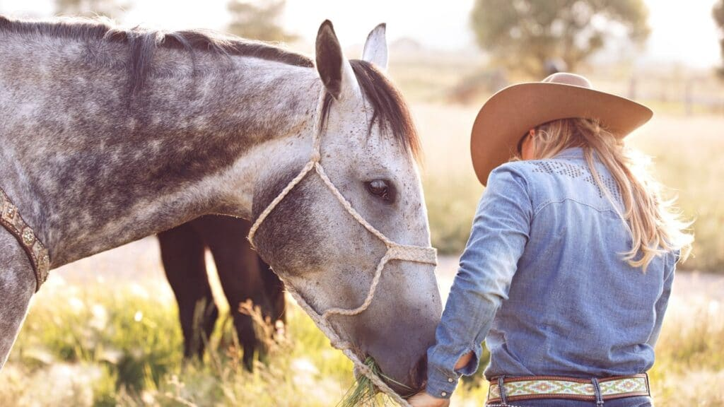 picture of a horse and its owner,