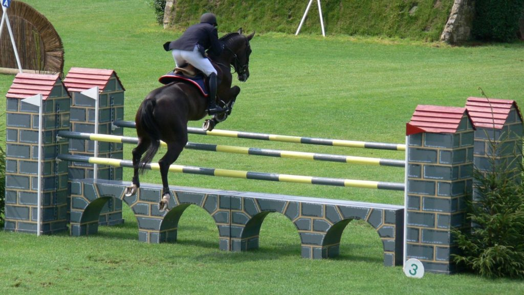 picture of a horse jumping in a showjumping competition,