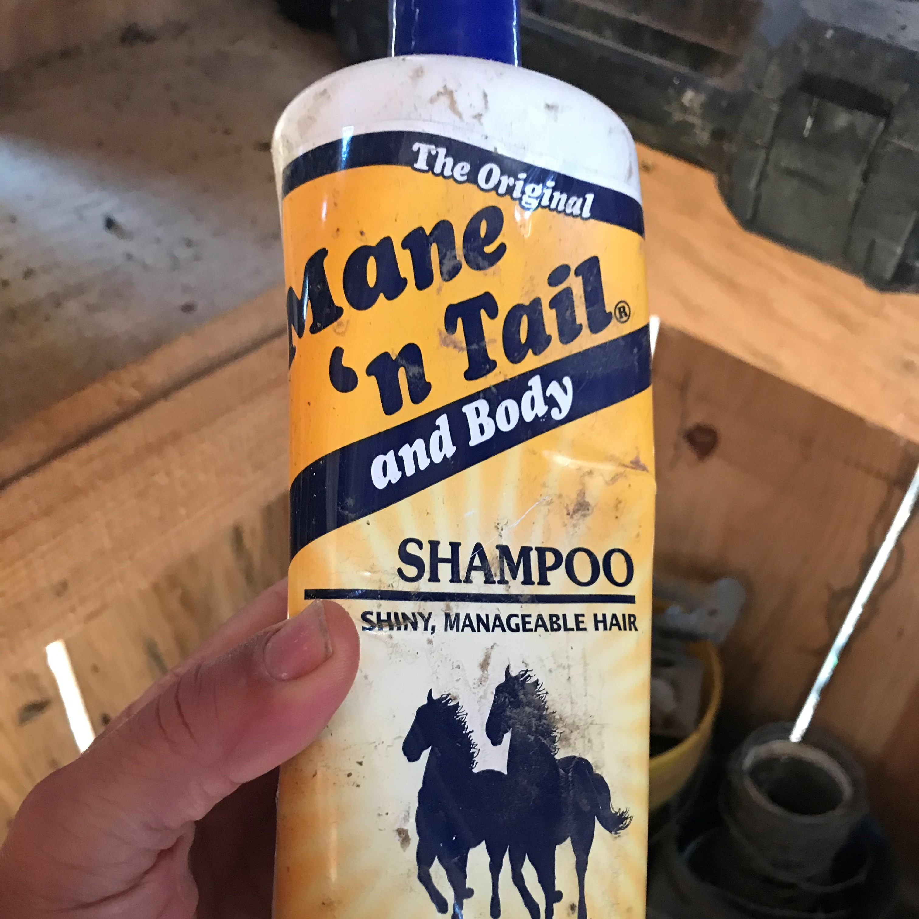 picture of me holding a bottle of horse shampoo.