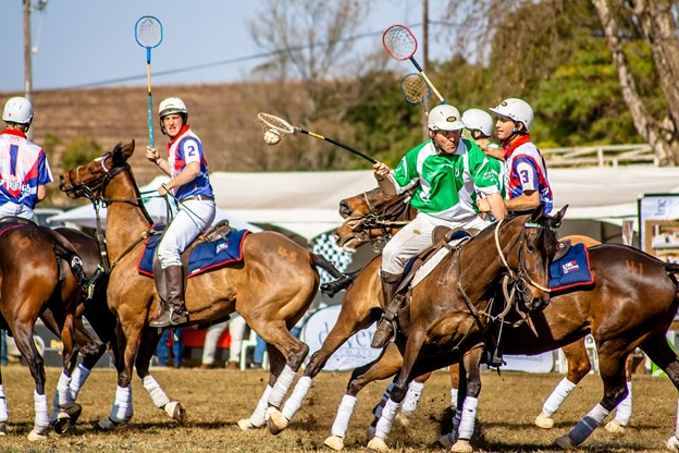 picture of people playing polo,