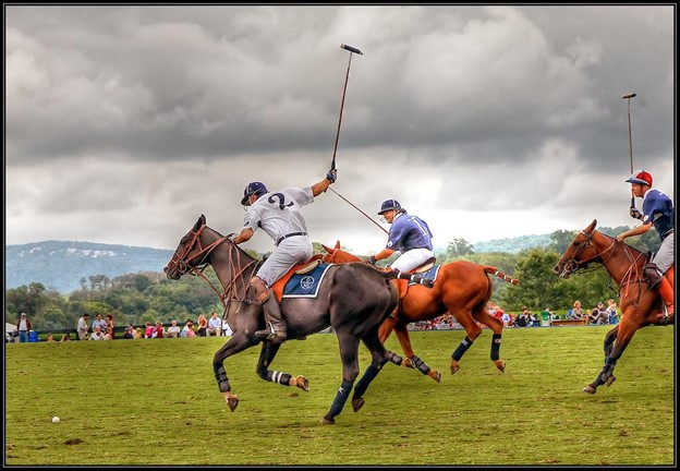 Picture of horse polo players chasing a ball,