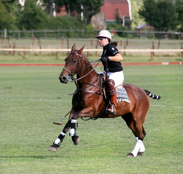Picture of a woman playing polo,