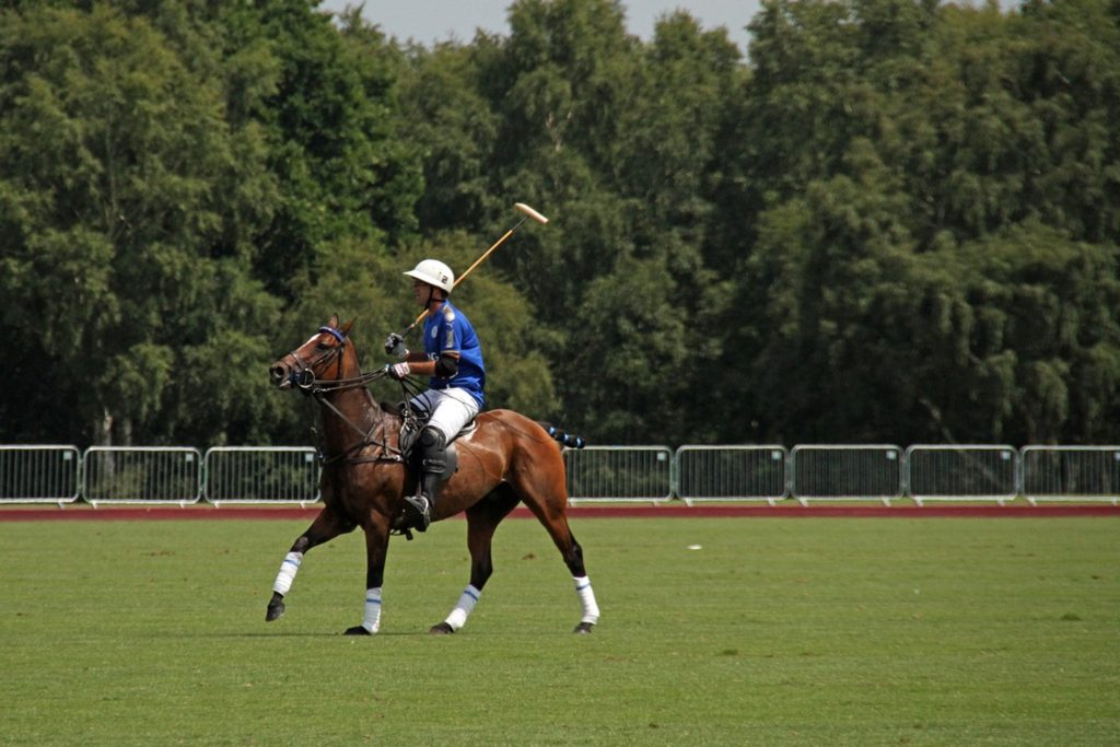 Polo player on horseback riding on a playing field,