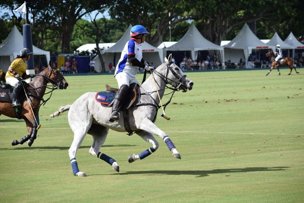 picture of horse and rider during a polo game.